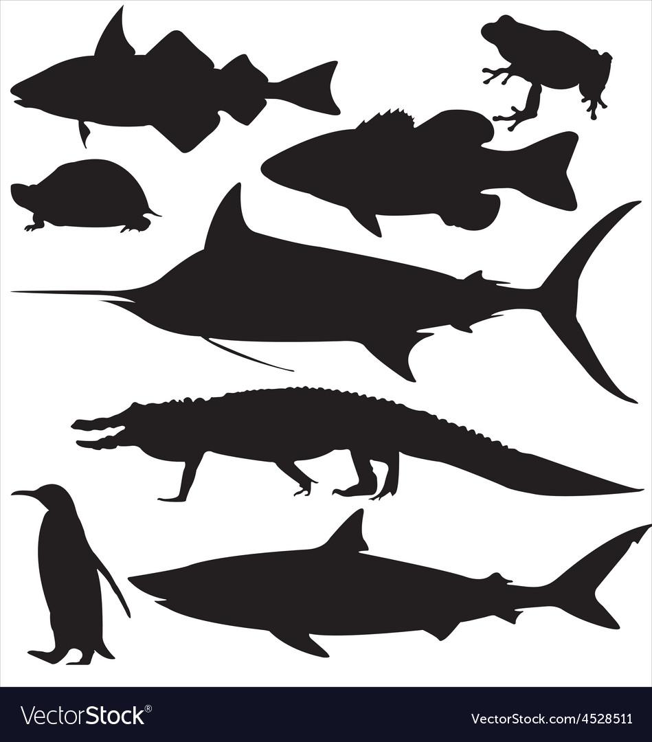 Eight aquatic vector | Price: 1 Credit (USD $1)