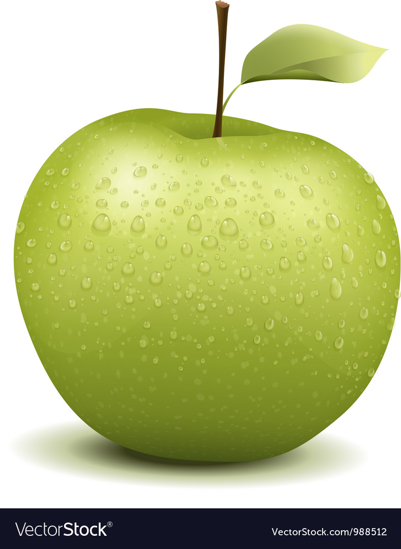 Fresh green apple vector | Price: 1 Credit (USD $1)