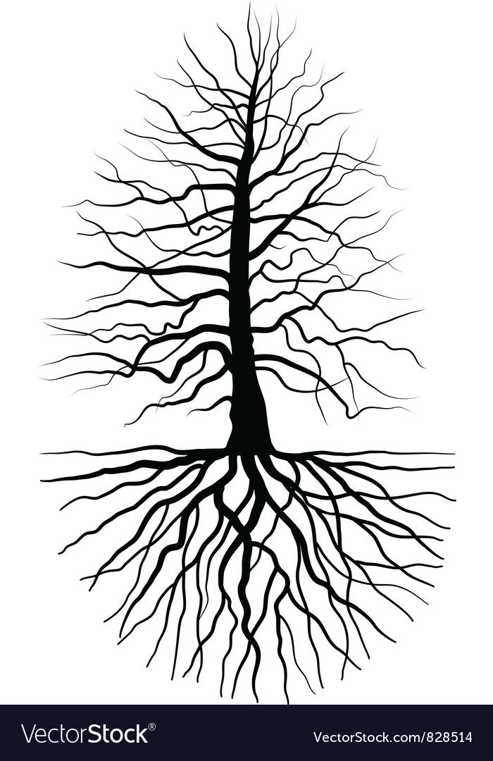 The tree and root vector | Price: 1 Credit (USD $1)