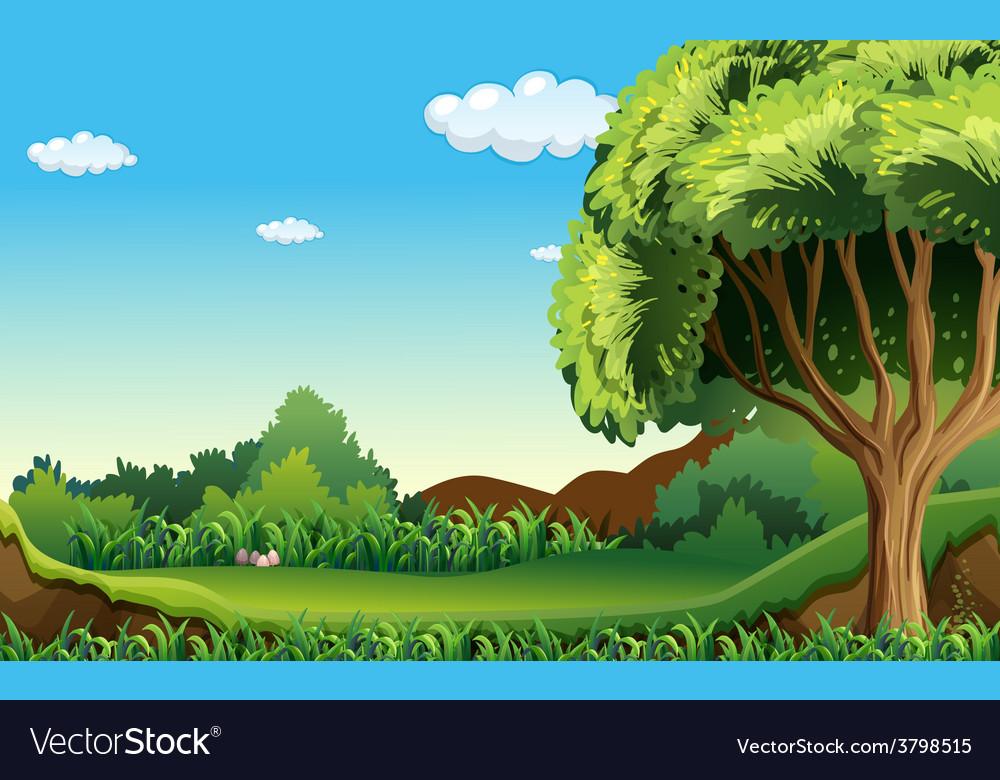 A green environment vector | Price: 1 Credit (USD $1)