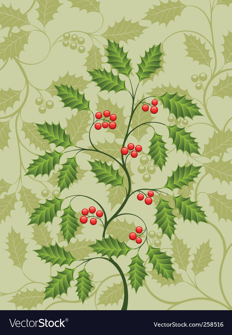 Holly vector | Price: 1 Credit (USD $1)