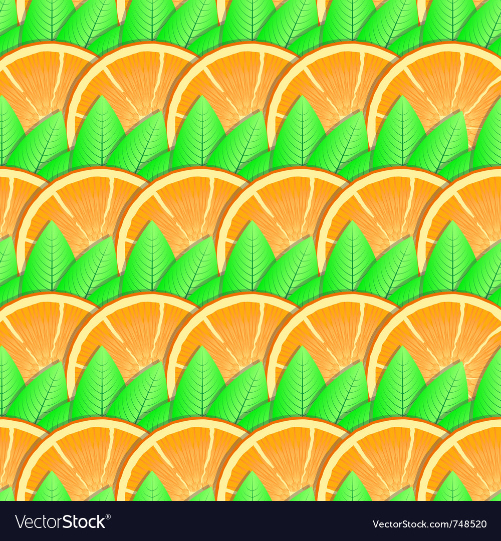 Citrus-fruit background vector | Price: 1 Credit (USD $1)