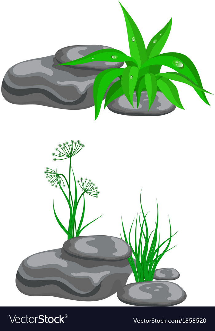 Stones with green grass vector | Price: 1 Credit (USD $1)