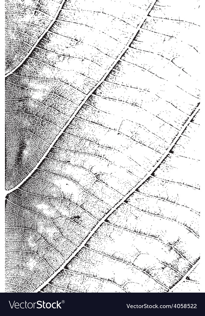 Leaf overlay texture vertical vector | Price: 1 Credit (USD $1)
