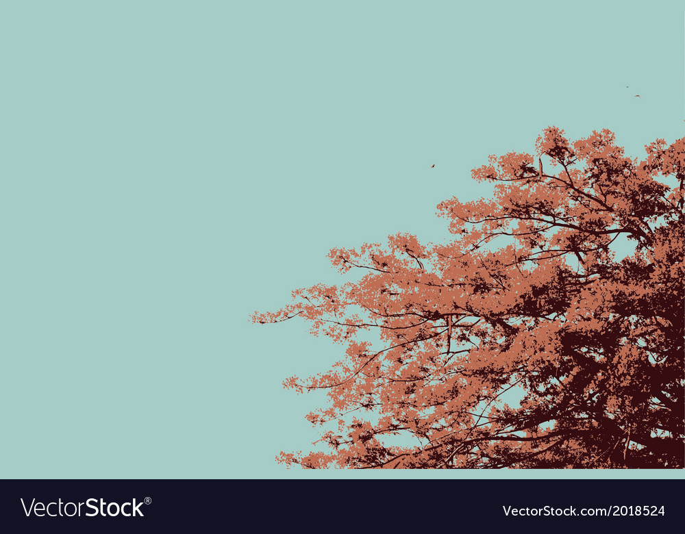 The flame trees vector | Price: 1 Credit (USD $1)