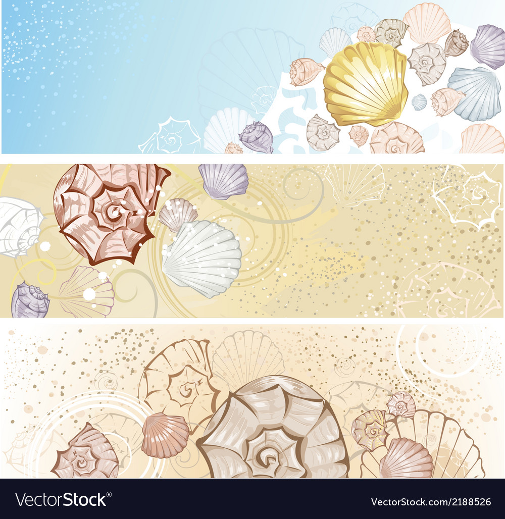 Four banner with seashells vector | Price: 1 Credit (USD $1)