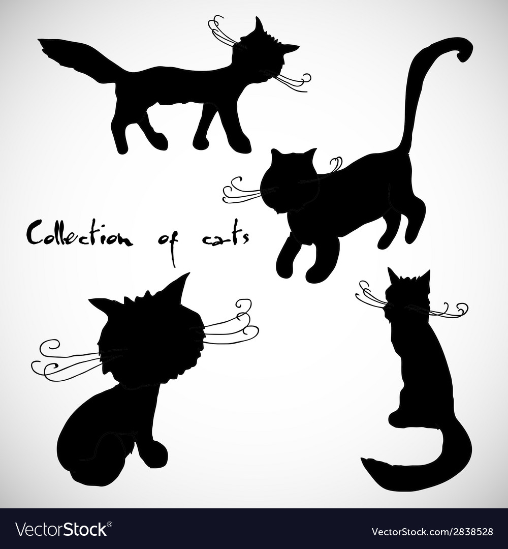 Collection of four cats vector | Price: 1 Credit (USD $1)