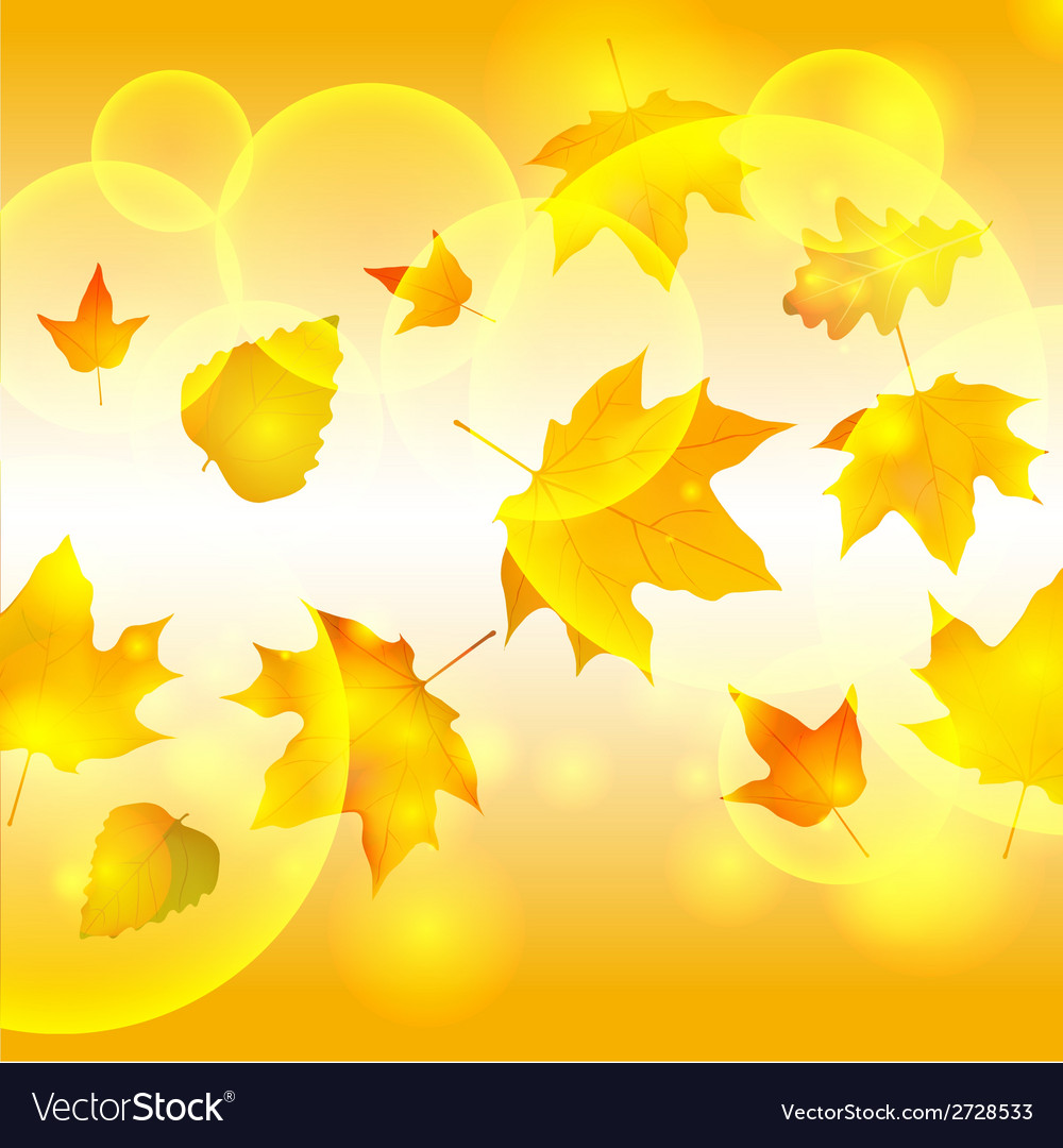 Autumn autumnal background beautiful beauty botany vector | Price: 1 Credit (USD $1)