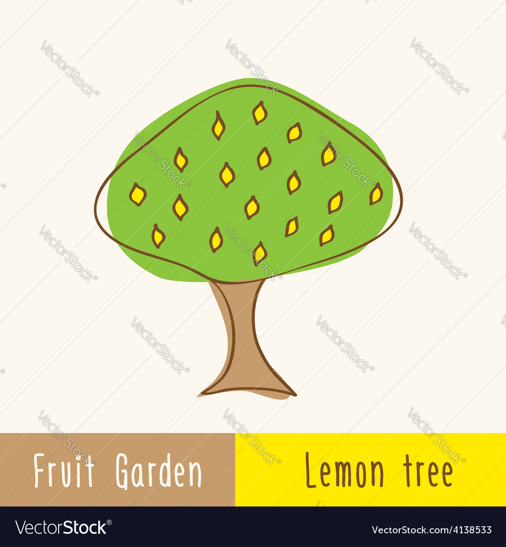 Single garden fruit tree vector | Price: 1 Credit (USD $1)