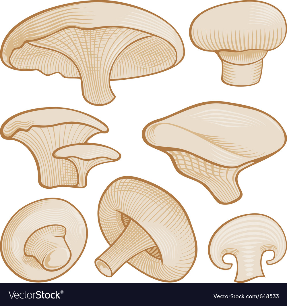Woodcut mushroom icons vector | Price: 1 Credit (USD $1)