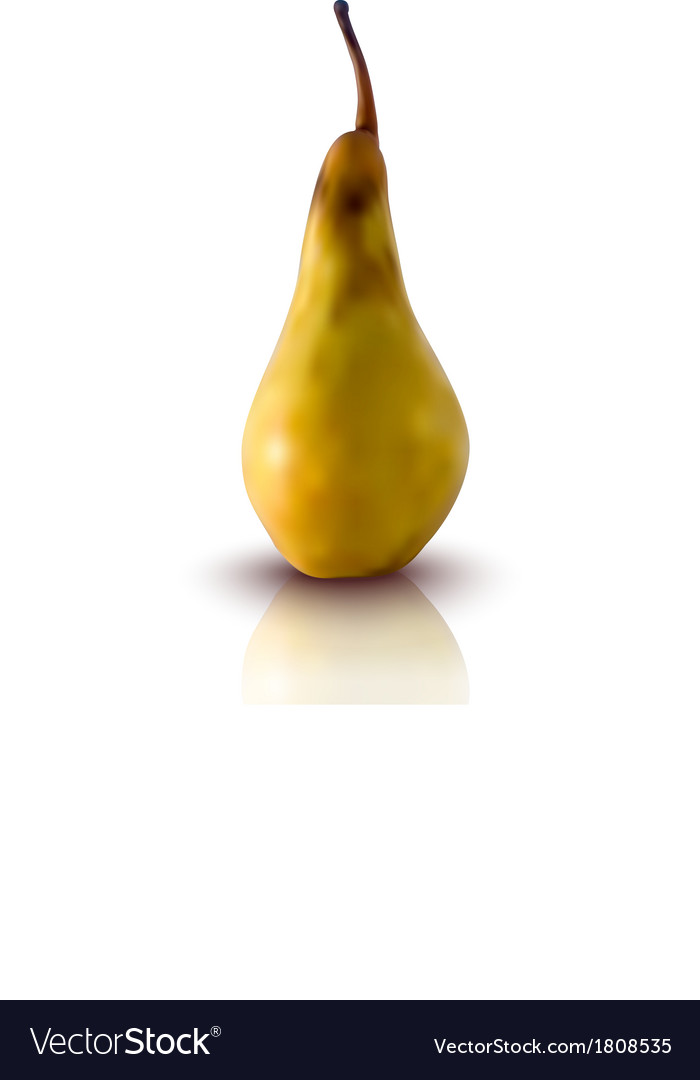 Pear vector | Price: 1 Credit (USD $1)