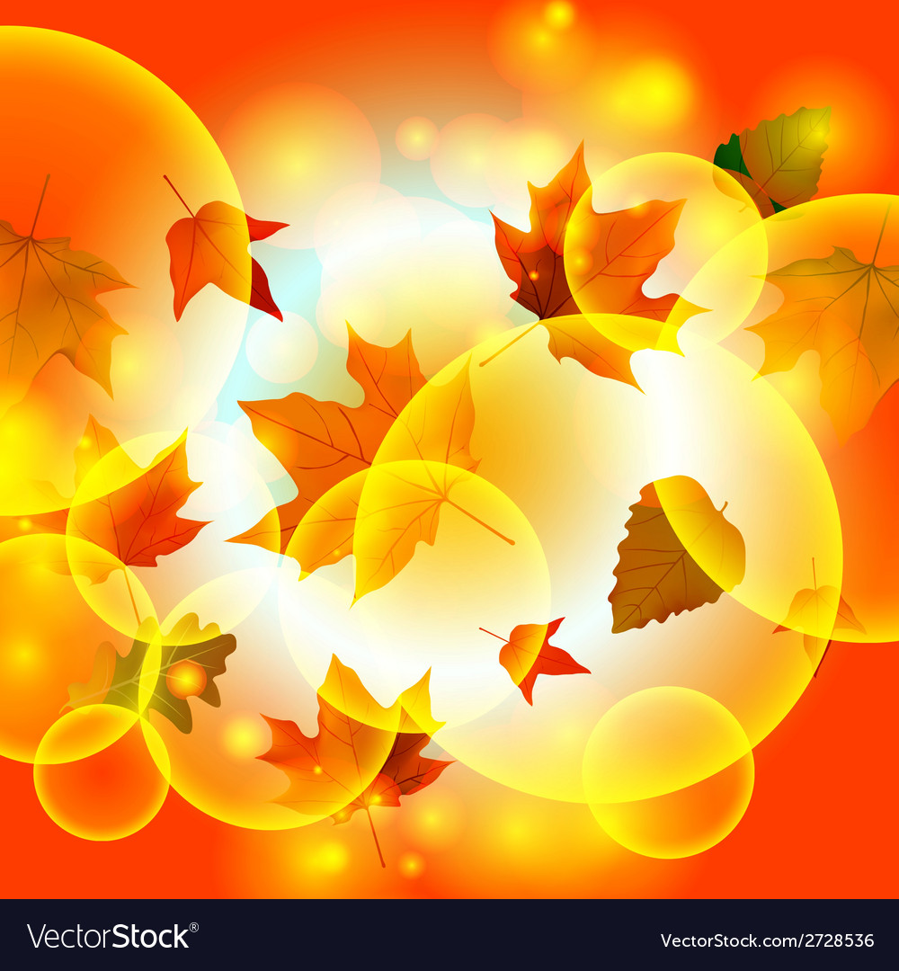 Autumn autumnal background beautiful beauty botany vector   Price: 1 Credit (USD $1)