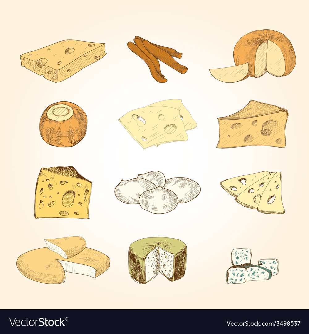 Cheese collection vector | Price: 1 Credit (USD $1)