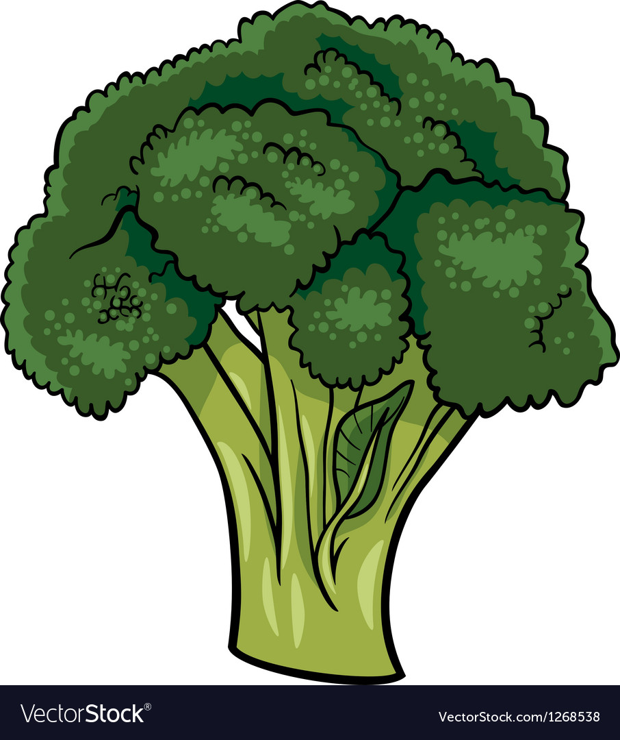 Broccoli vegetable cartoon vector | Price: 1 Credit (USD $1)