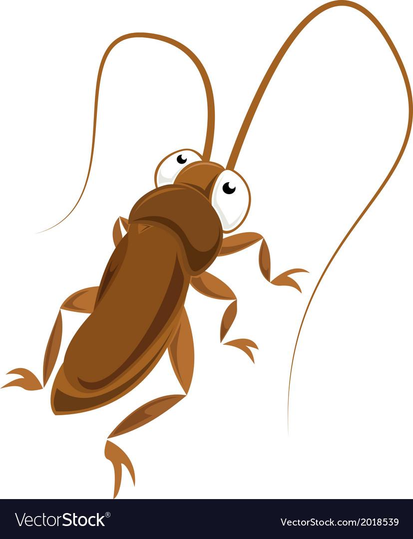 Big eyed cockroach vector | Price: 1 Credit (USD $1)