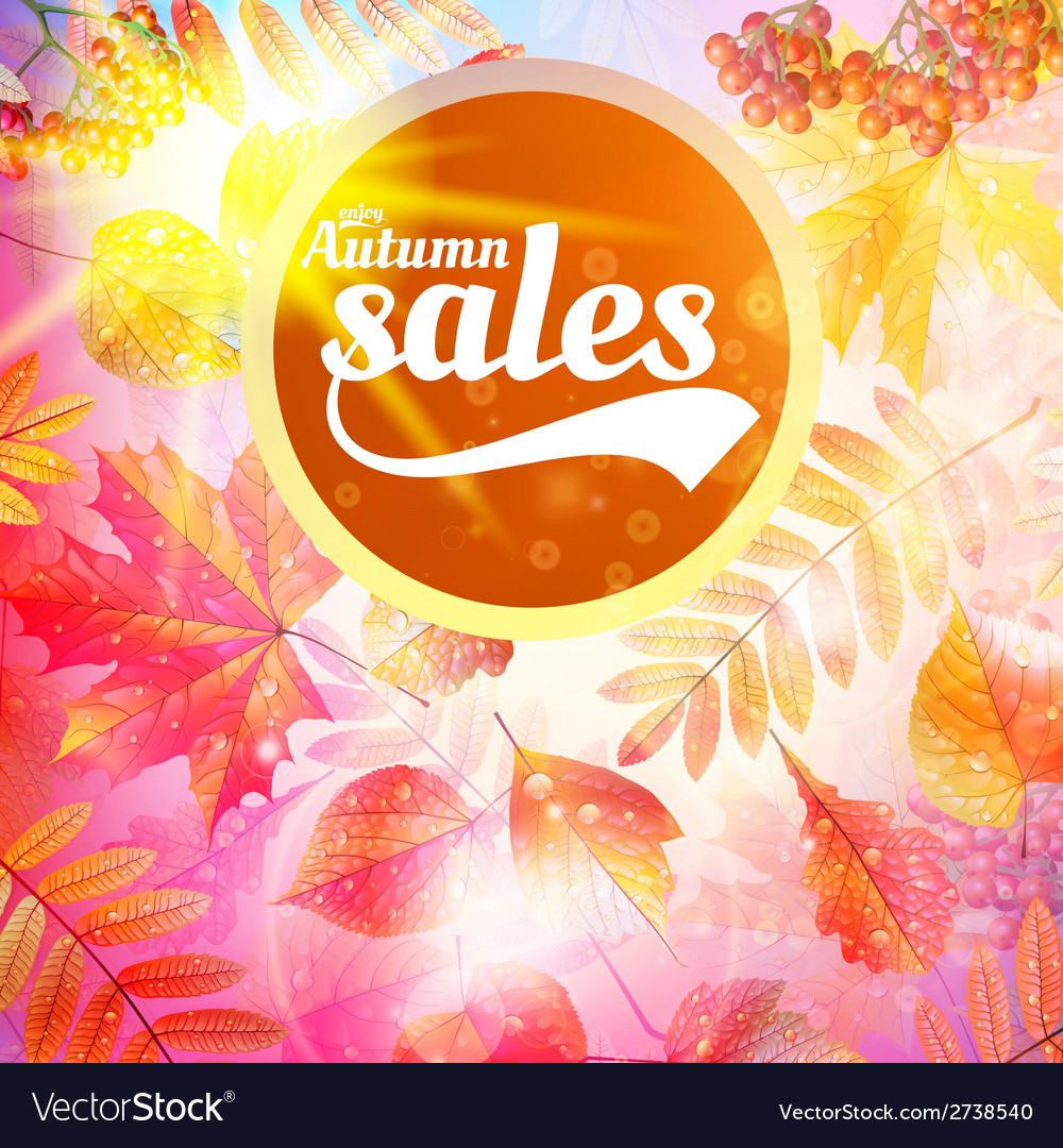Autumn sale fall yellow leaves nature background vector   Price: 1 Credit (USD $1)