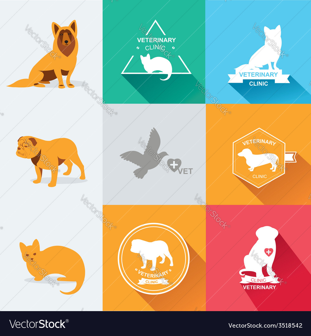Set dog ans cats icon and labels flat vector | Price: 1 Credit (USD $1)