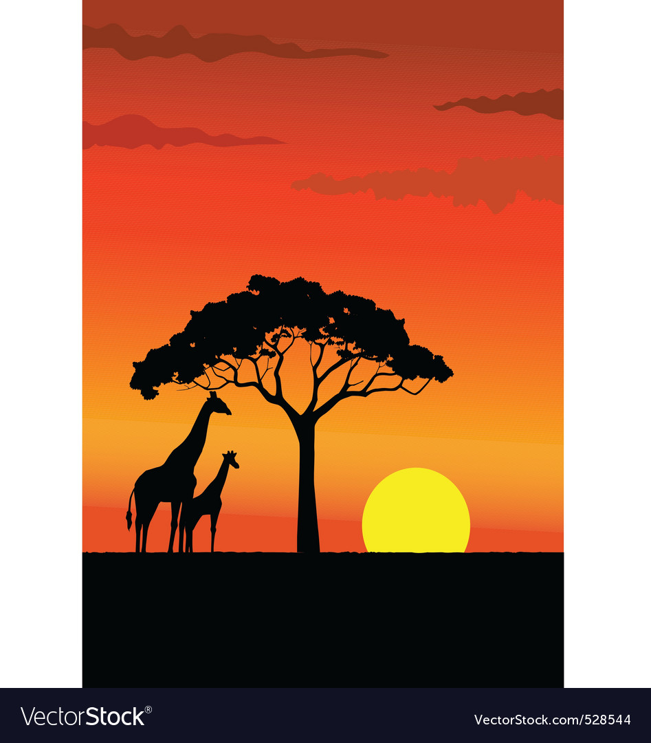 African sunset vector | Price: 1 Credit (USD $1)