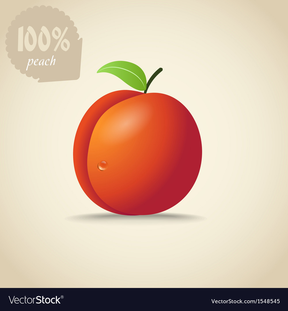 Cute orange peach vector | Price: 1 Credit (USD $1)