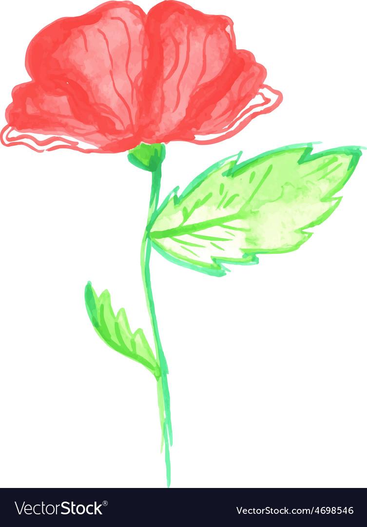 Watercolor poppy vector | Price: 1 Credit (USD $1)