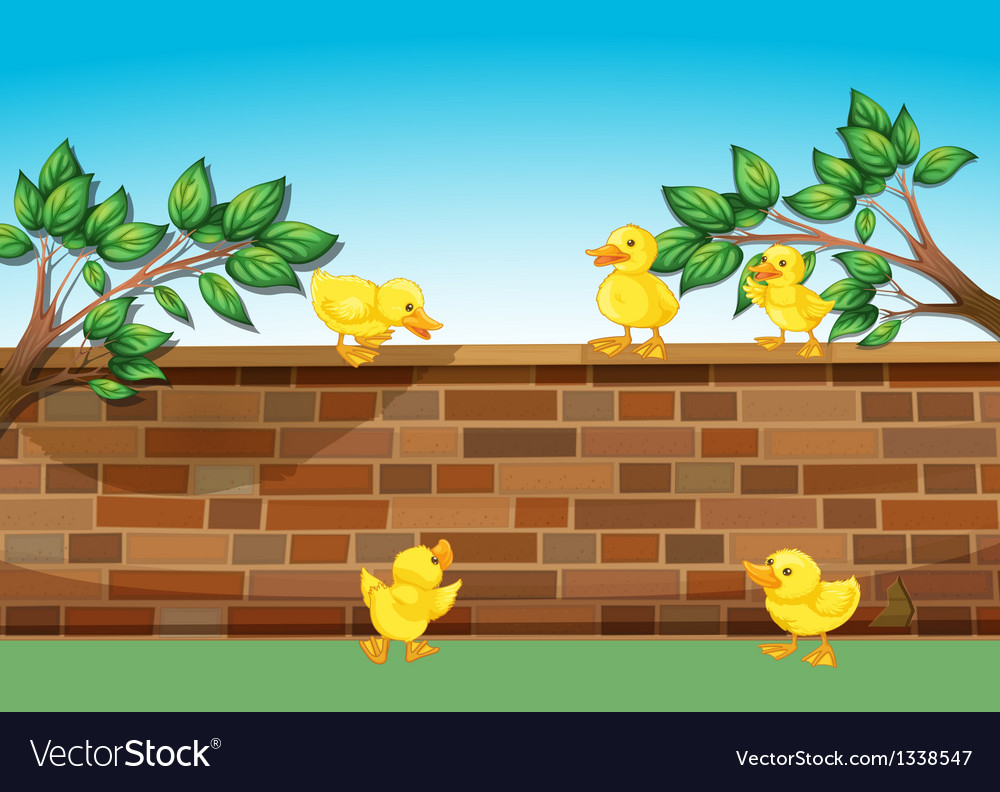 A wall with five ducklings vector | Price: 1 Credit (USD $1)