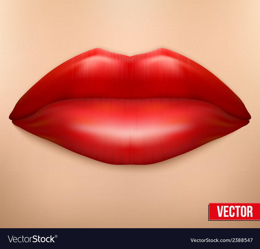 Close-up of a female face with clean skin and lips vector | Price: 1 Credit (USD $1)