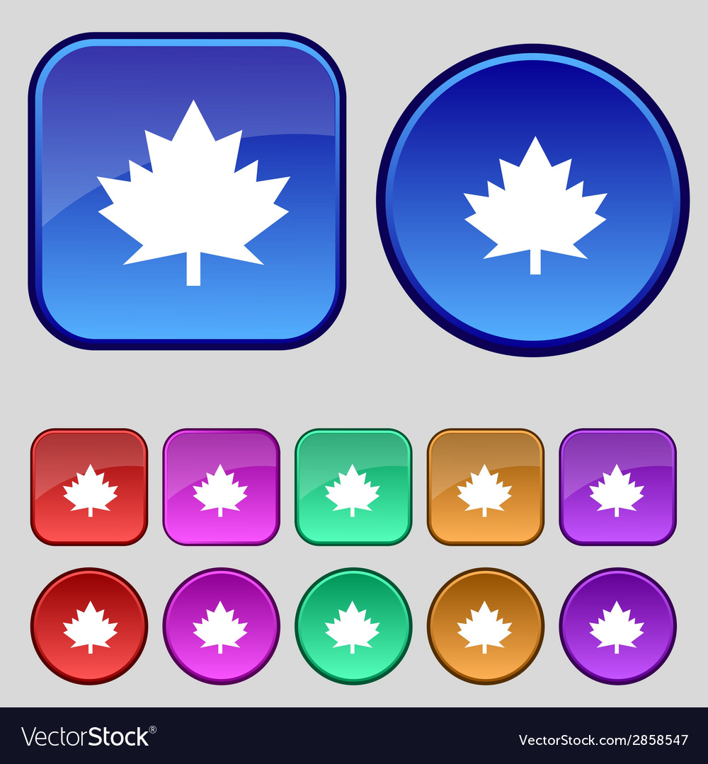 Maple leaf icon set colourful buttons vector | Price: 1 Credit (USD $1)
