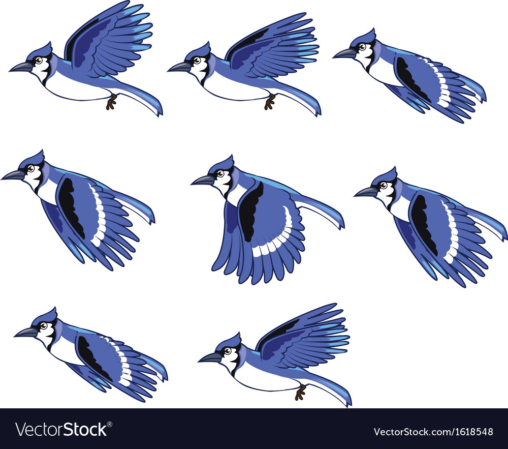 Blue jay animation sprite vector | Price: 1 Credit (USD $1)