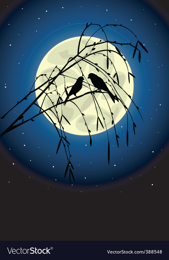 Two birds vector | Price: 1 Credit (USD $1)