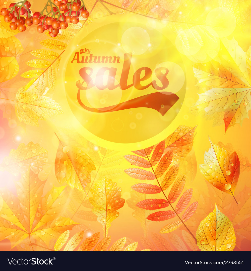 Autumn sale fall yellow leaves nature background vector | Price: 1 Credit (USD $1)