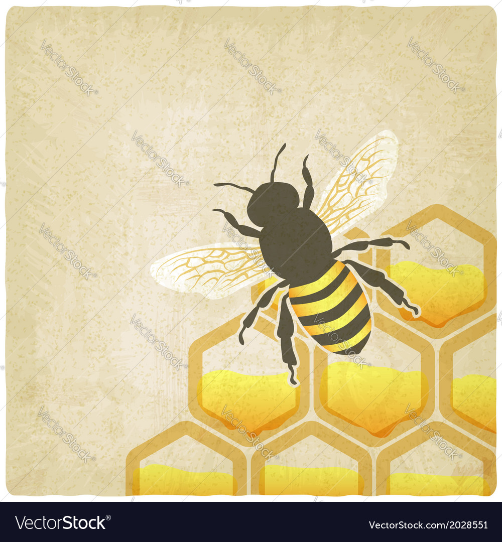 Bee honeycomb old background vector | Price: 1 Credit (USD $1)