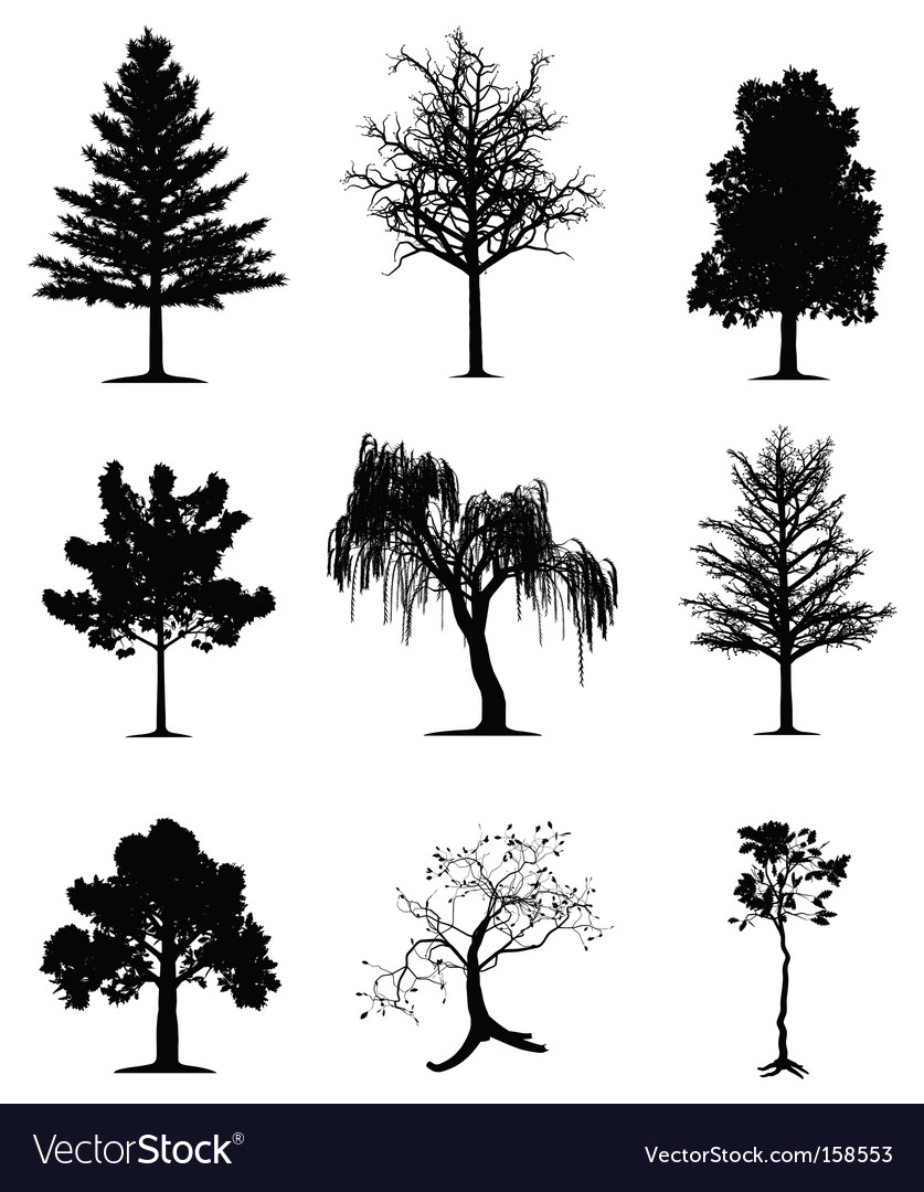 Trees collection vector | Price: 1 Credit (USD $1)