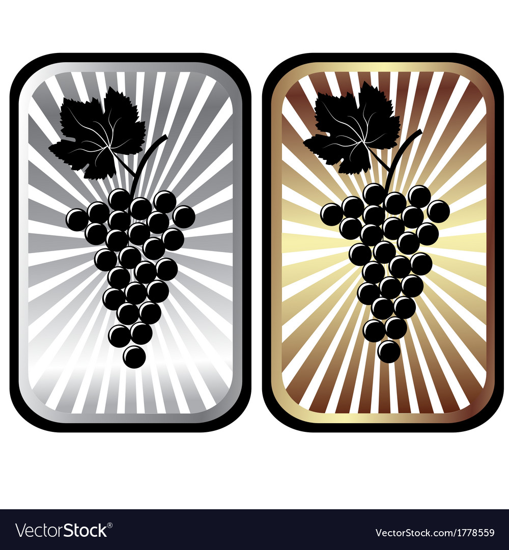 Shiny labels with grapes advertisement for wine vector | Price: 1 Credit (USD $1)