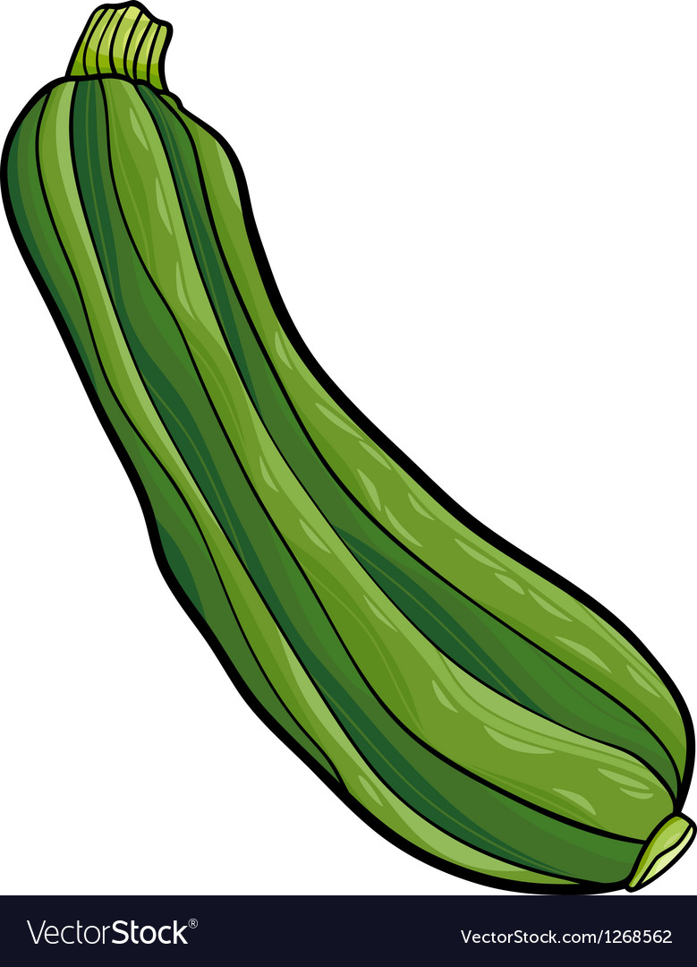 Zucchini vegetable cartoon vector | Price: 1 Credit (USD $1)