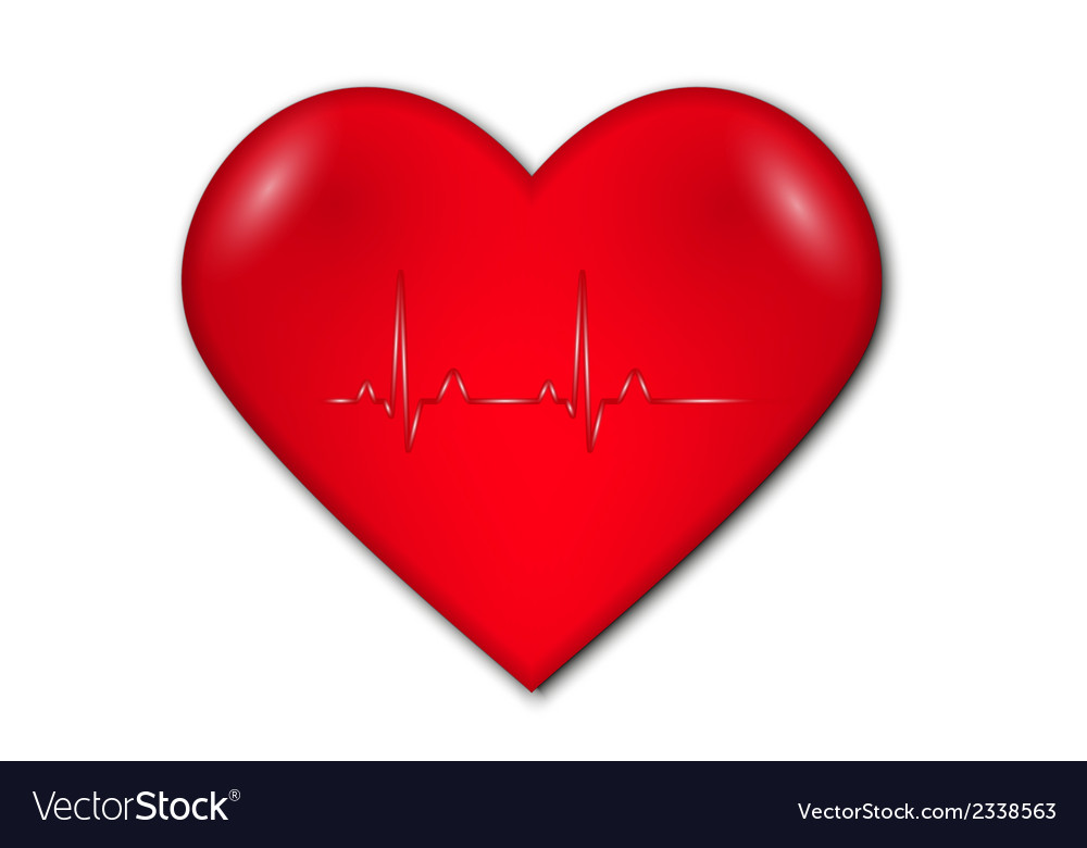 Heart with graph and heart rate vector | Price: 1 Credit (USD $1)