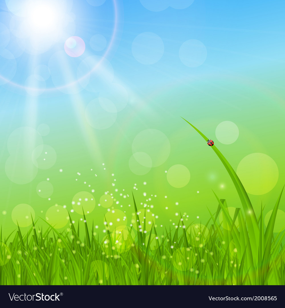 Summer abstract background with grass vector | Price: 1 Credit (USD $1)