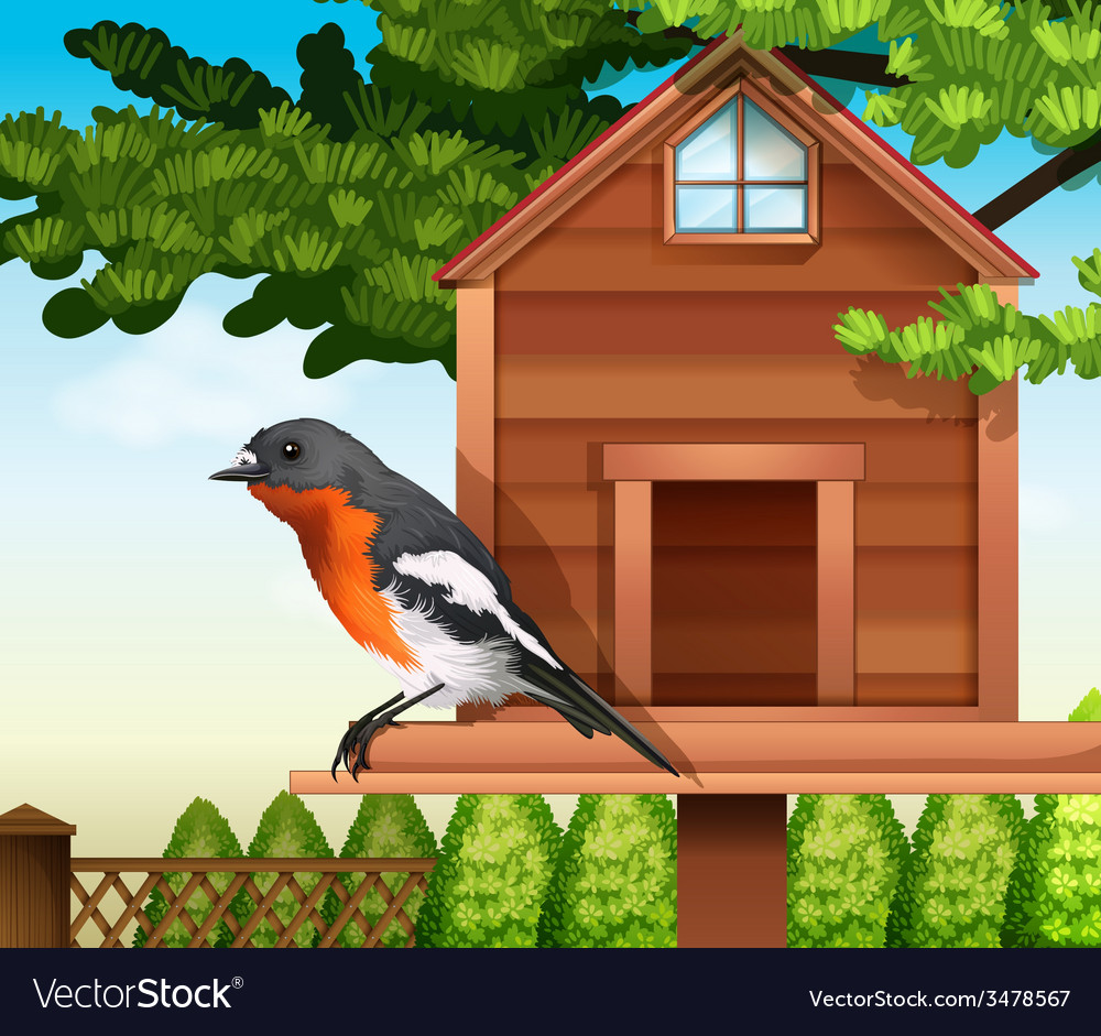 A bird at the pethouse vector | Price: 1 Credit (USD $1)