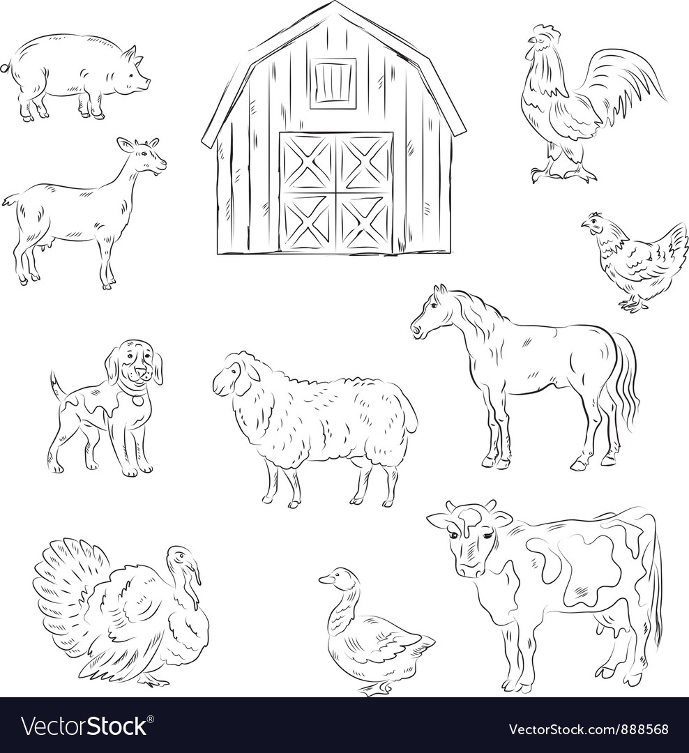 Farm animals vector | Price: 1 Credit (USD $1)