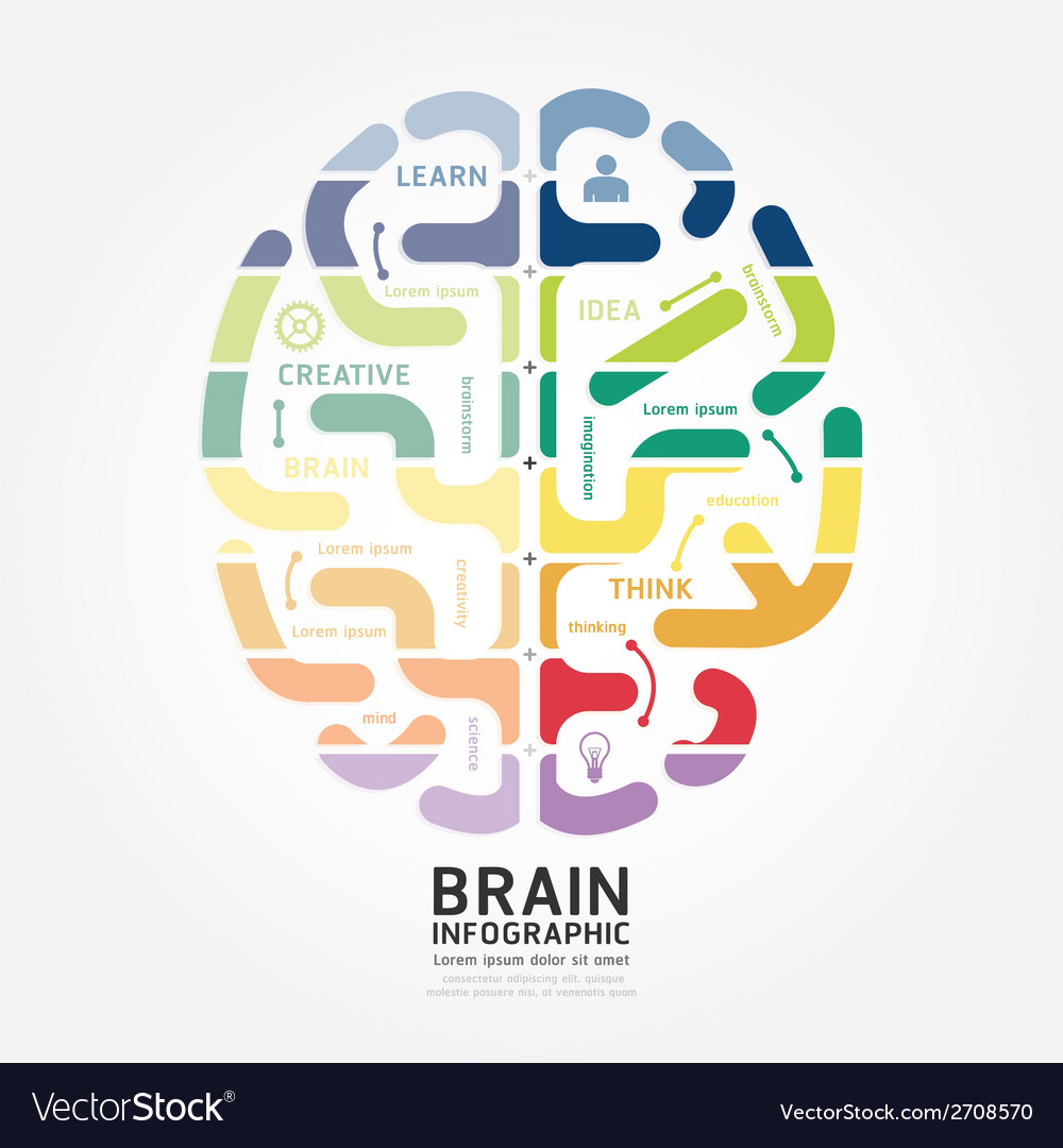 Infographics brain design diagram line style vector | Price: 1 Credit (USD $1)