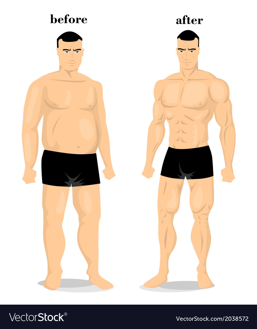 Before and after weight vector | Price: 1 Credit (USD $1)