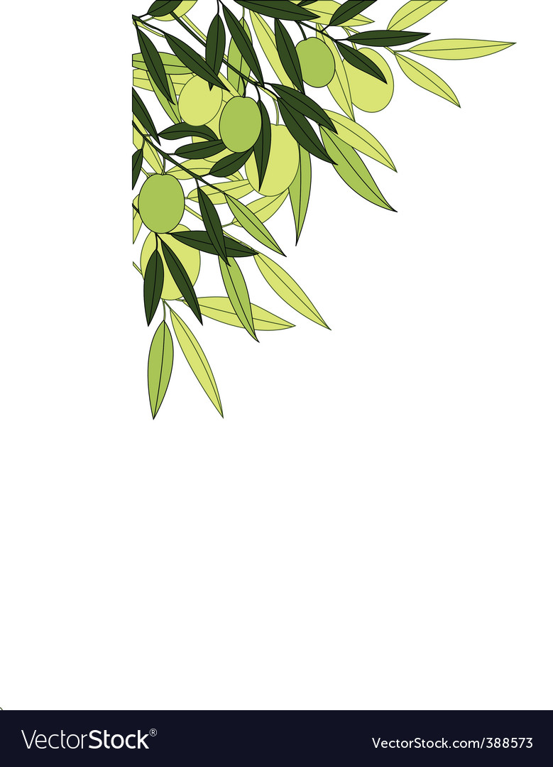Olives background vector | Price: 1 Credit (USD $1)