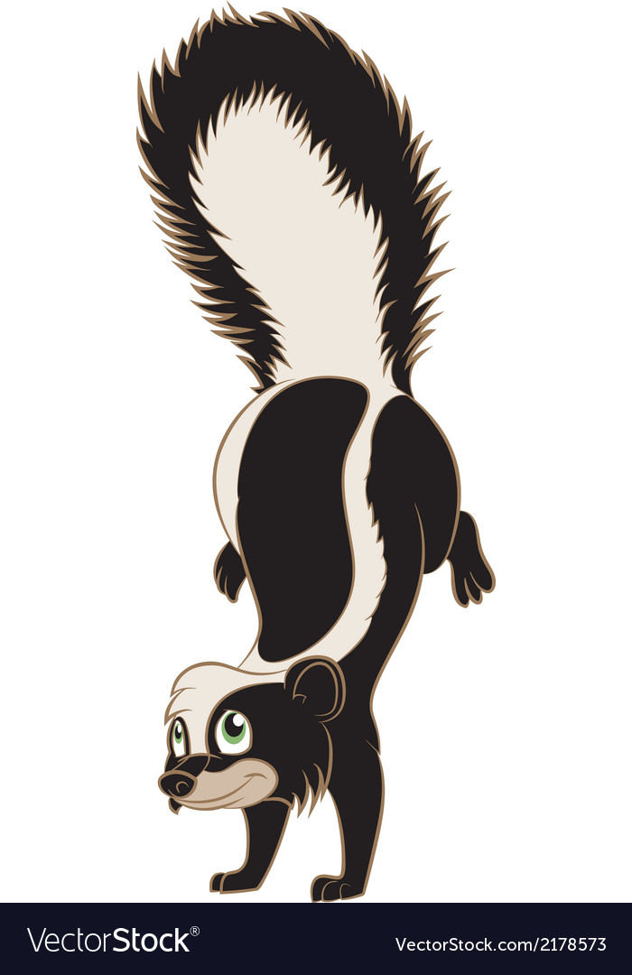 Skunk vector | Price: 1 Credit (USD $1)