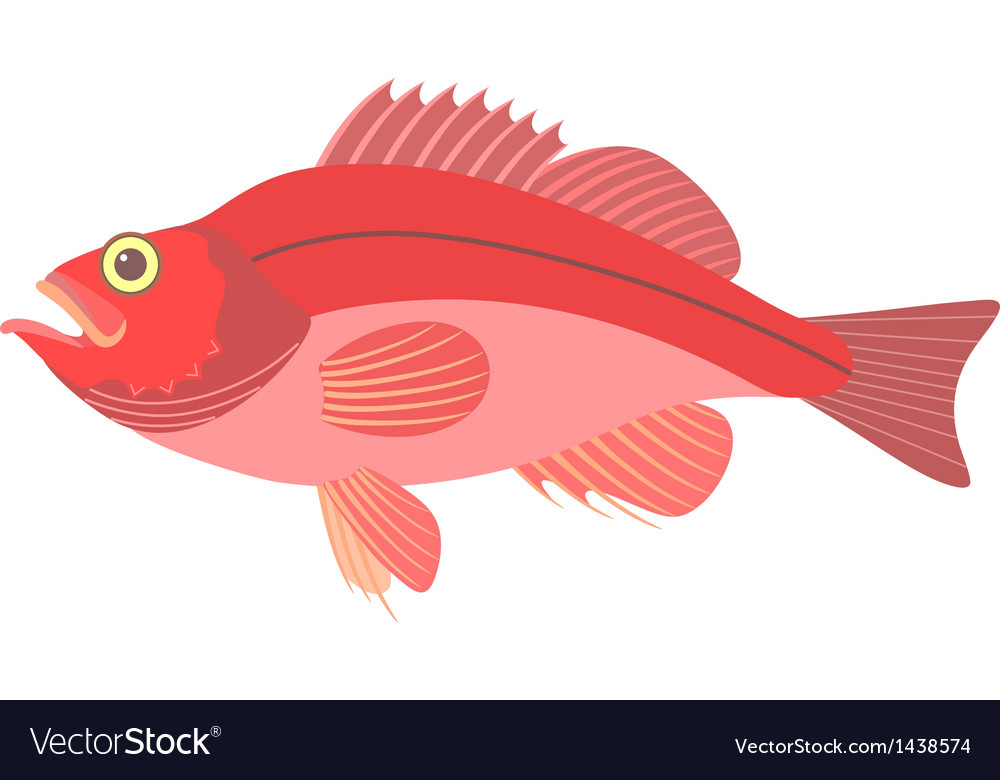 Perch vector | Price: 1 Credit (USD $1)
