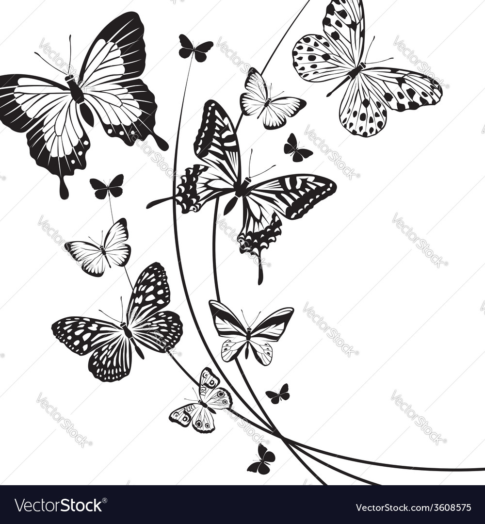 Butterfly pattern vector   Price: 1 Credit (USD $1)