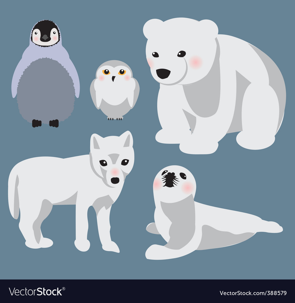 Arctic babies vector | Price: 1 Credit (USD $1)