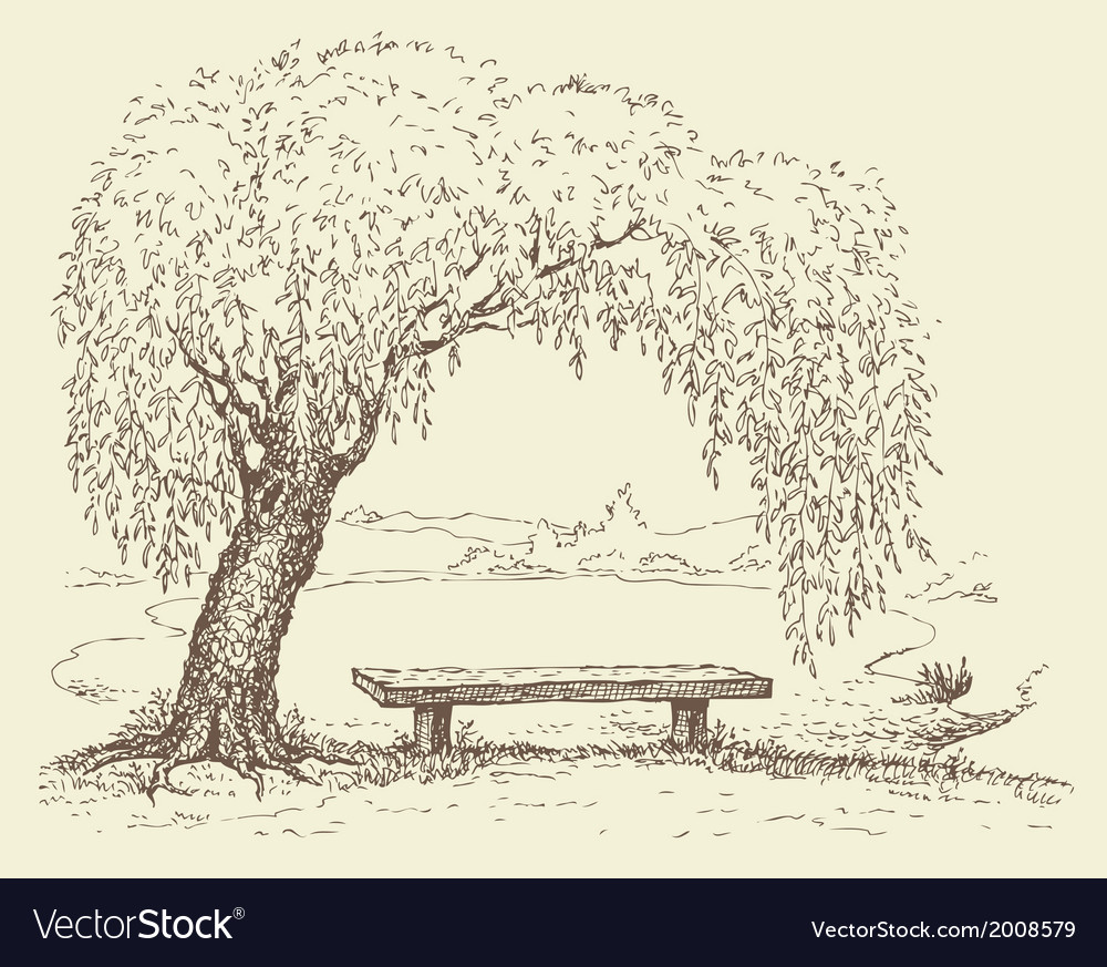 Wooden bench under a willow tree by the lake vector | Price: 1 Credit (USD $1)