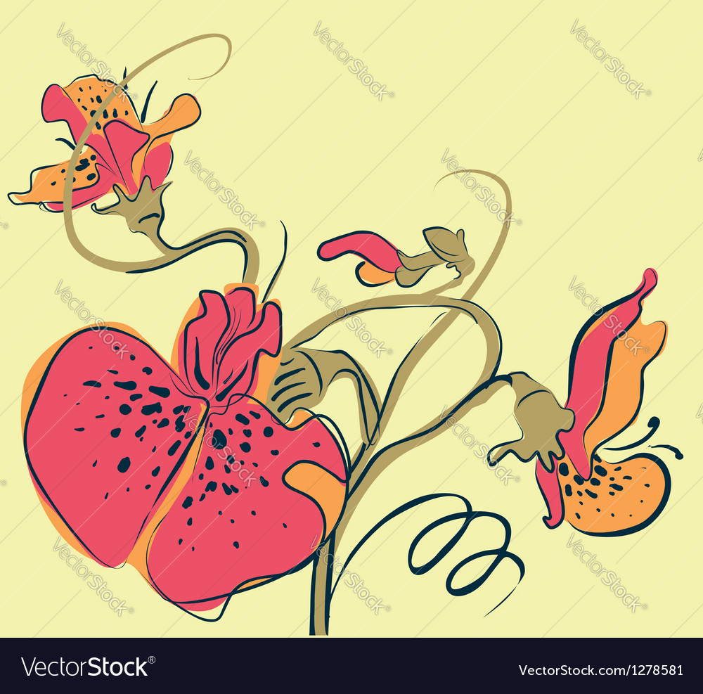Pea flowers vector | Price: 1 Credit (USD $1)