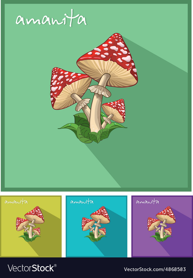 Icon with fly agaric vector
