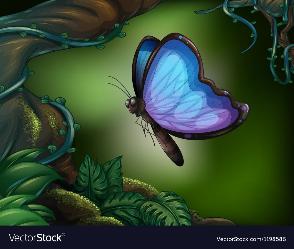 A butterfly in the rainforest vector | Price: 1 Credit (USD $1)