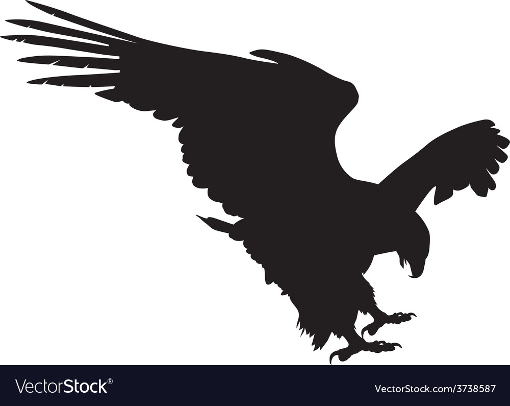 Eagle hunting vector | Price: 1 Credit (USD $1)